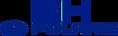 brpolaris-logo.png