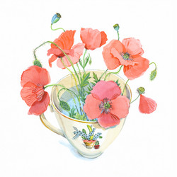 poppies cactus cup for web