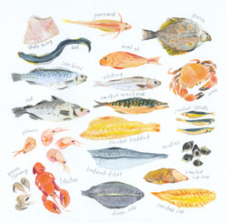know your fishes