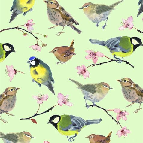 Birds and Blossom