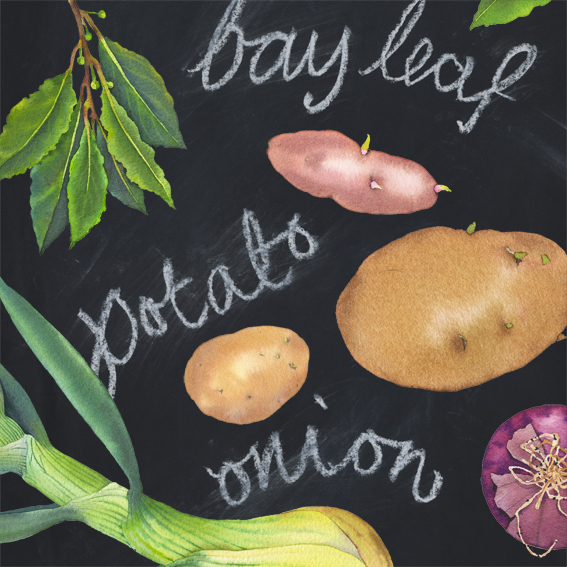 Bay leaves and potato