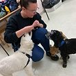 Mississauga Puppy Dog Training Classes 4.PNG