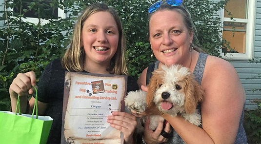 Mississauga Puppy Dog Training Classes