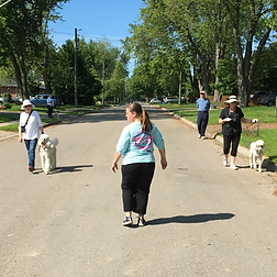 Mississauga Dog Walking Training Classes