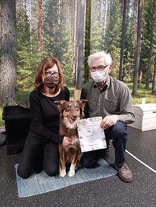 Mississauga Intermediate Obedience Puppy Training Classes.jpeg