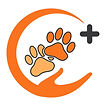 Dog Trainer Mississauga Oakville Etobicoke Brampton Milton Burlington Pawsitive Plus Logo