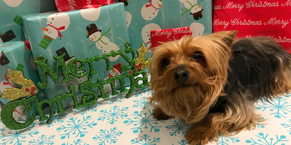Free 'Doggy Holiday Manners' Seminar