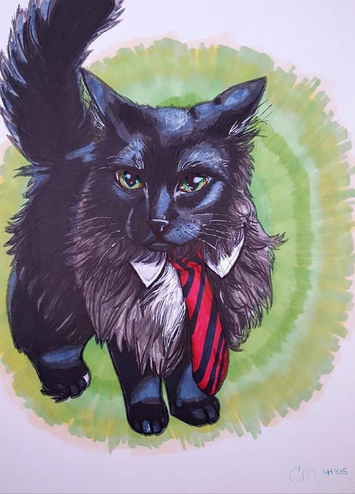 Cat-in-the-Tie.jpg