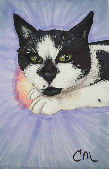 Rita-SPCA.jpg