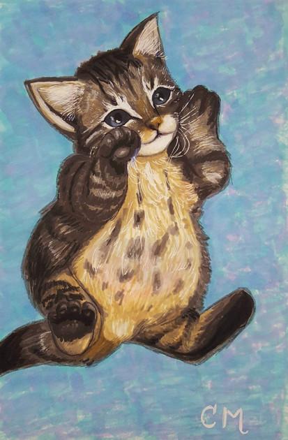 Little-Pufferfish-Kitten.jpg
