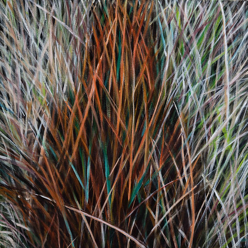 Shadow Grass 1