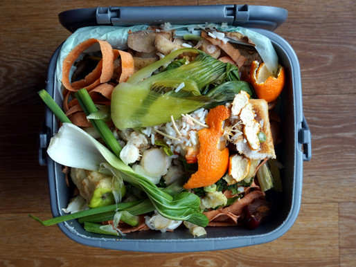 Plastic-Free July Challenge #14: Put your food waste in the compost 🍌