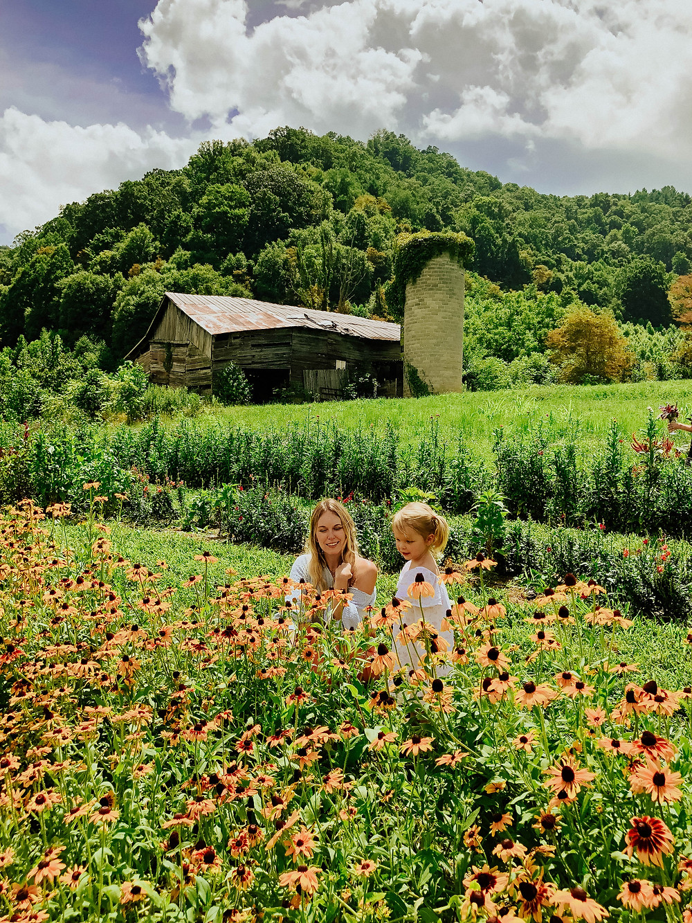 Family Photos at Lady Luck Flower Farm in Asheville NC as seen on lifestyle blog The Tony Townie