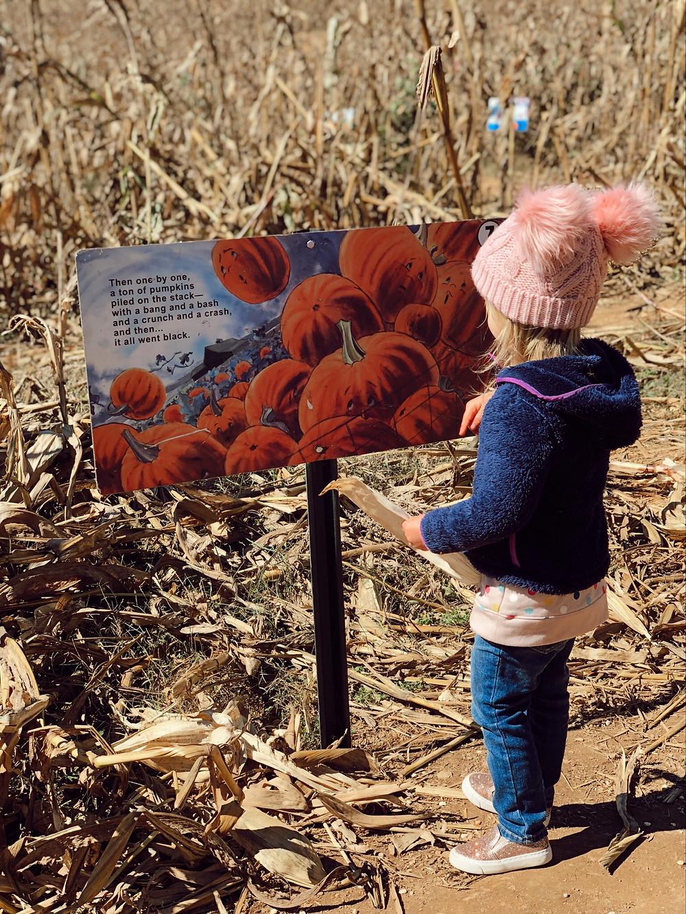 Spookly Story Eliada Home Corn Maze Asheville
