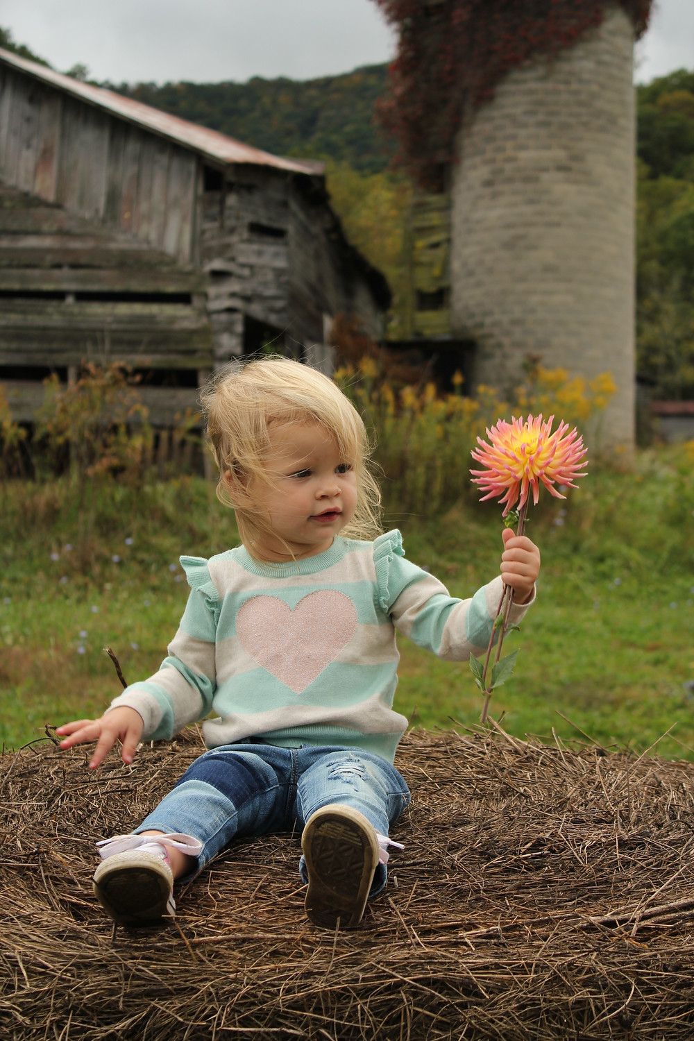 A little girl sits on a bale of hay and looks at a flower at Lady Luck Flower Farm in Asheville, NC.