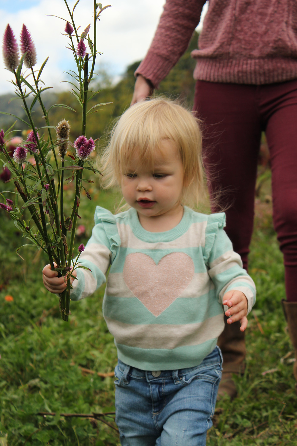 A little girl holds long purple flowers at Lady Luck Flower Farm in Asheville, NC.