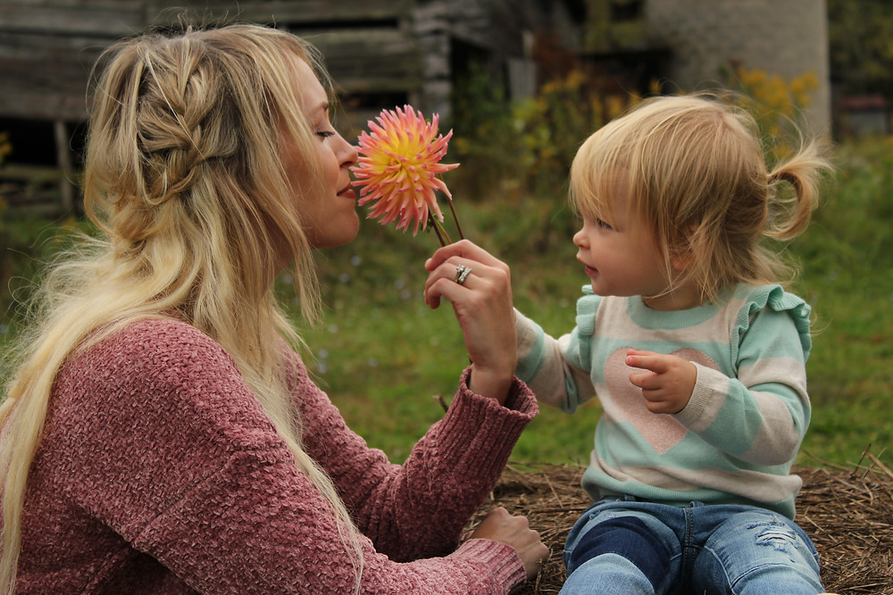 A litte girl holds out a flower for her om to smell at Lady Luck Flower Farm in Asheville, NC.
