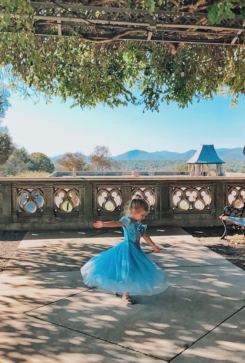 A little girl in a Cinderella dress twirls on the terrace off the library at the Biltmore House.