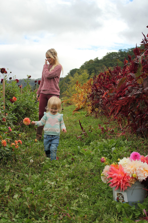 Family Trip to the Flower Farm