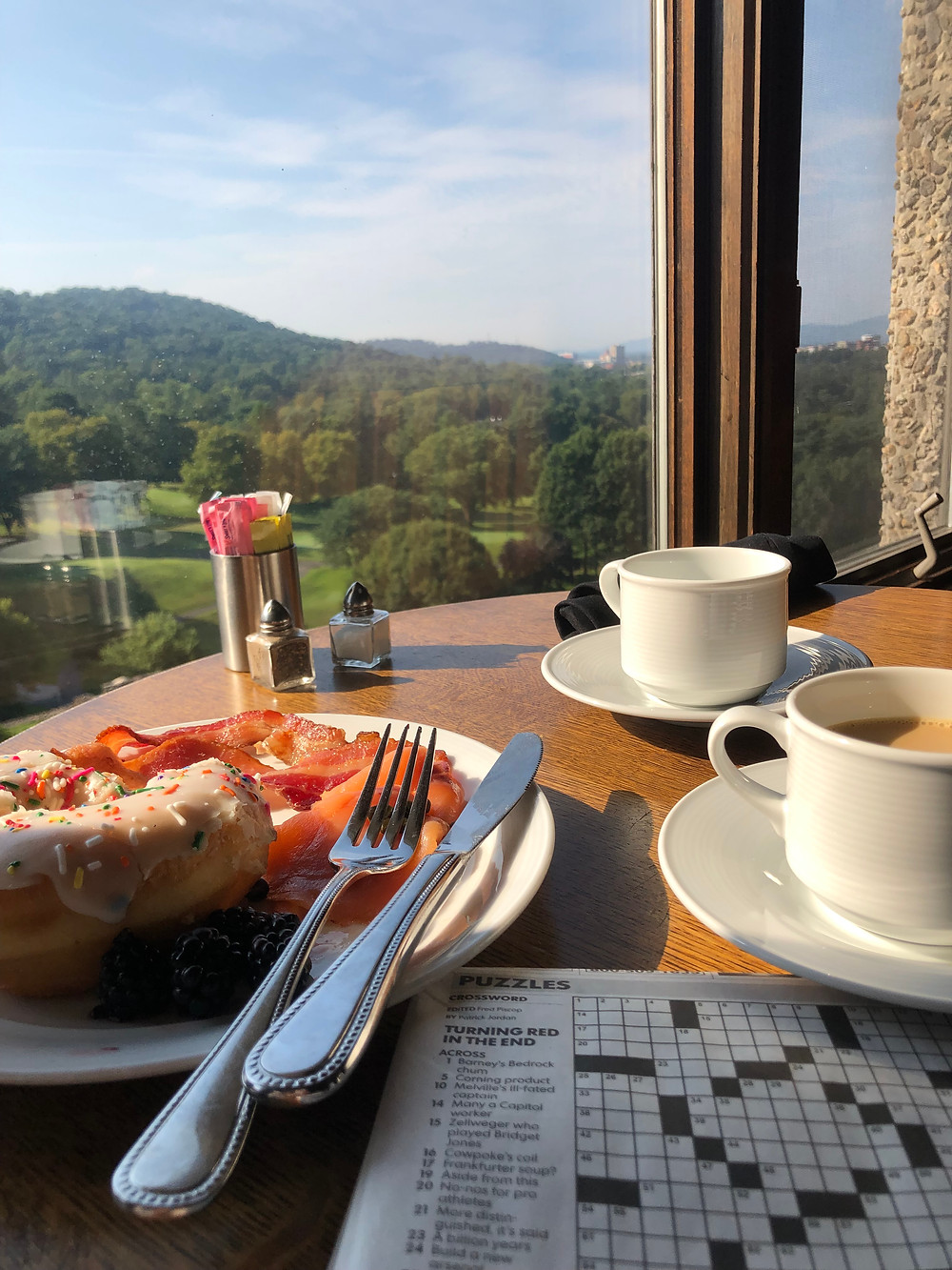 Romantic getaway to Grove Park Inn in Asheville, NC. Breakfast on Club Level overlooking Blue Ridge Mountains. Asheville travel guide and video diary.