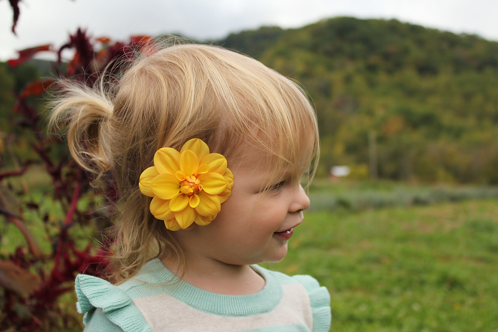 A yellow flower sits behind the ear of a little girl at Lady Luck Flower Farm in Asheville, NC.