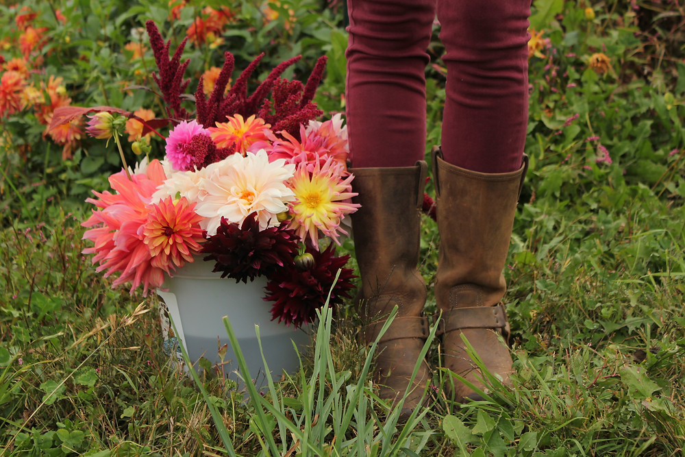 Rugged boots stand next to a bucket of vibrant pink flowers.