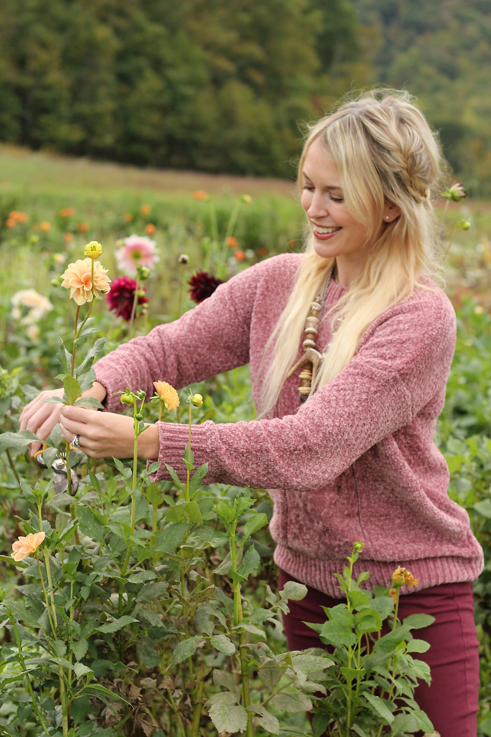 Brooke Williams clips a flower at Lady Luck Flower Farm in Asheville, NC.