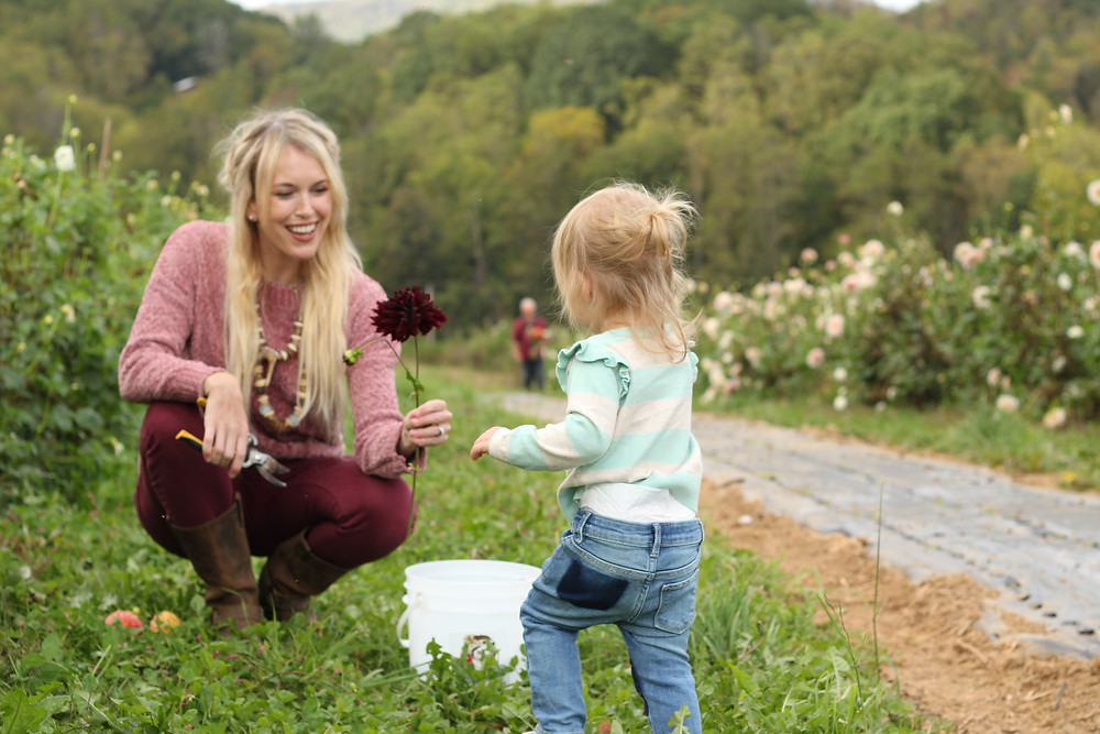 Brooke hands Harlow a dark red flower at Lady Luck Flower Farm in Asheville, NC.