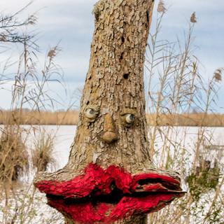 Lip_tree.jpg
