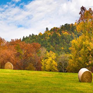 Arkansas_Hay_.jpg