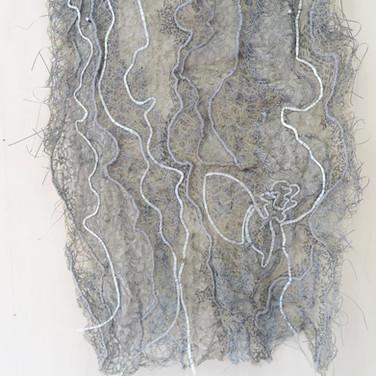banksia variation iv