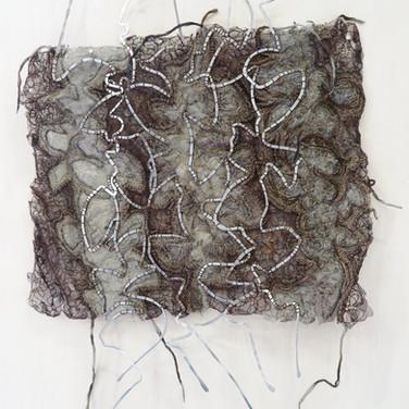 banksia variation iii