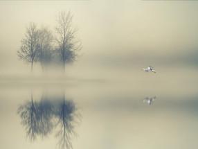 Silencio (II)