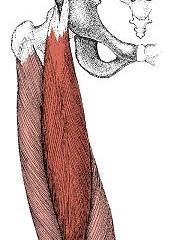 冷えによる膝の痛み