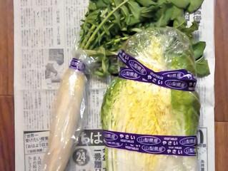 手作り野菜頂きました
