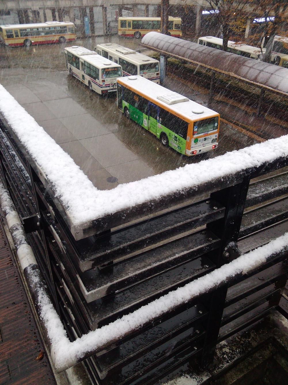 多摩市多摩センターの整体院身体均整堂からだやの雪景色