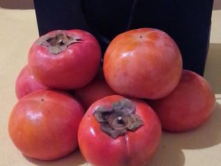 柿を頂きました