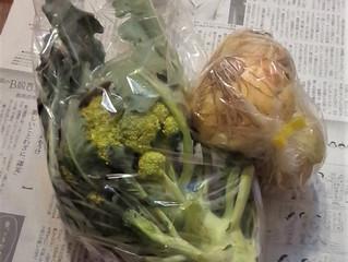 野菜を頂きました