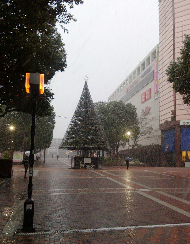 多摩市多摩センターの整体院身体均整堂からだやの雪