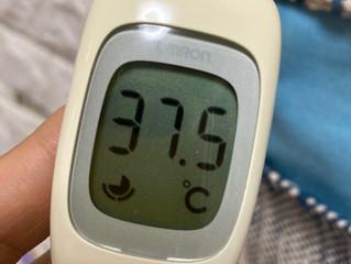37,5℃