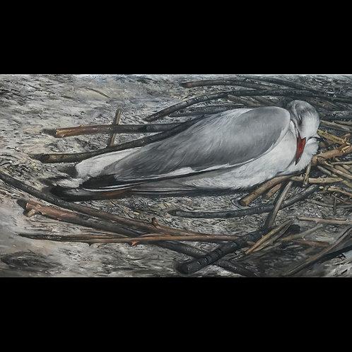 Seagull. 1989.