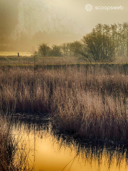 Railway Land, Lewes