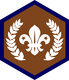 Chief Scout Bronze Award