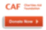 Donate to RPF via CAF