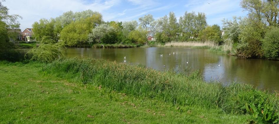East Beach Pond