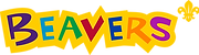 East Sussex Scouts - Beavers