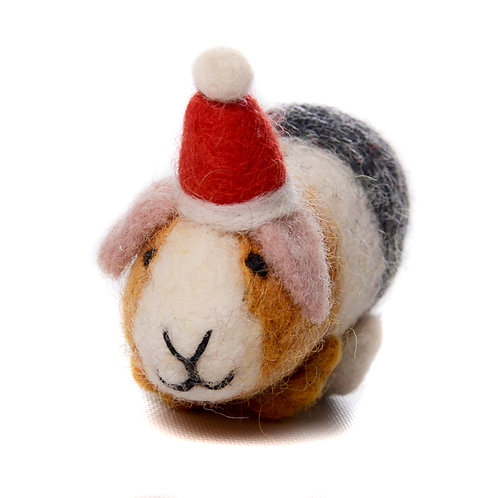 Guinea Pig with Hat