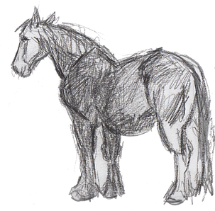 horse-2-web.png