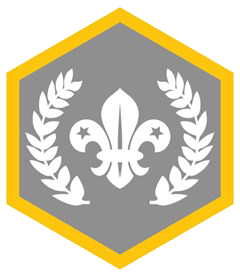 Chief Scout Platinum Award