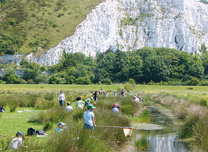 Pond dipping in the Railway Land ditches.png